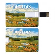 Credit Card Flash Drive - 4GB