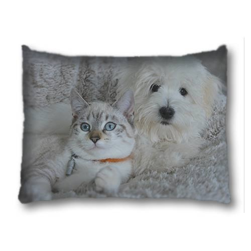 Pet Bed Medium
